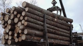 Crane arm loader unloads wood logs from heavy truck at sawmill production. Cold cloudy winter day stock video