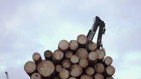 Crane arm picks up lumber logs from truck at sawmill. On cloudy cold winter day, slow motion stock video