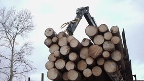 Crane arm picks up wood logs from truck at sawmill. On cloudy cold winter day, slow motion stock footage
