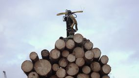 Crane arm unloads lumber logs from truck at sawmill. On cloudy cold winter day, slow motion stock video footage