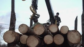 Crane arm unloads lumber logs from truck at sawmill. On cloudy cold winter day, slow motion stock video