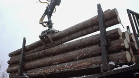 Crane arm unloads wood logs from truck at sawmill. On cloudy cold winter day, slow motion stock video