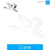 Crane bird learn to draw vector. Crane learn birds educational game learn to draw vector illustration Stock Photography