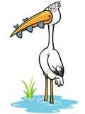 Crane Bird Stock Image