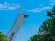 Crane In Blue Sky amarillo Imagen de archivo