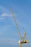 Crane and a blue sky Stock Photo