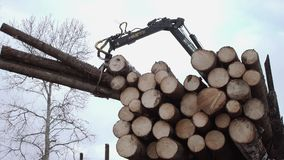 Crane claw lifts up wood logs from truck at sawmill. On cloudy cold winter day, slow motion stock video footage