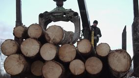 Crane claw loader unloads wood logs from heavy truck at sawmill factory. Cold cloudy winter day stock video footage