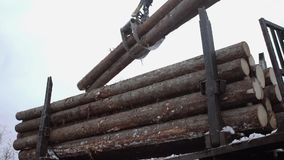 Crane claw picks up wood logs from truck at sawmill. On cloudy cold winter day, slow motion stock video