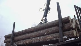 Crane claw unloads wood logs from truck at sawmill. On cloudy cold winter day, slow motion stock footage