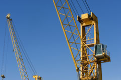Crane close up Stock Images