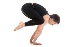 Crane (Crow) yoga Pose Royalty Free Stock Images