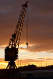 Crane Dawn Royalty Free Stock Photo