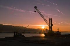 Crane at dawn Stock Photos