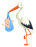 Crane delivering baby boy Stock Images