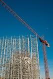 Crane do fole Imagens de Stock