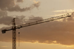 Crane at dusk in warm tone Stock Photography