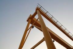 Crane el amarillo Imagen de archivo