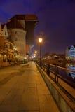 Crane em Gdansk Foto de Stock