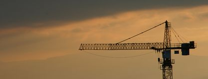 A crane in the evening light. Zoom on a crane during a sunset Stock Image