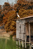 Crane in Floating house Royalty Free Stock Photos