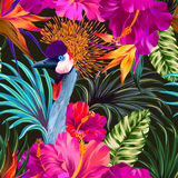Crane and flowers. Vector floral composition with portrait of crowned crane bird. Editable elements, detailed illustration, tropical pattern Stock Image
