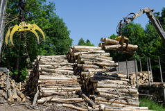 Crane a garra e a pilha de logs perto do reboque do caminhão Foto de Stock