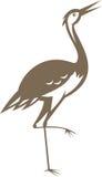 Crane-heron-looking-forward Royalty Free Stock Images