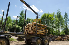 Crane loading cut logs on trailer in summer time Royalty Free Stock Photography
