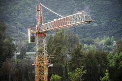 Crane nella città con una bella luce solare Fotografie Stock