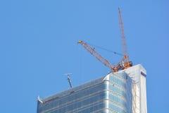 crane ogromne Zdjęcie Royalty Free