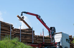 Crane operator loading logs on to truck Royalty Free Stock Image
