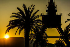 Crane and Palm Tree. In the sunset Royalty Free Stock Photos