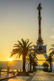 Crane and Palm Tree in the sunset. In Montenegro royalty free stock images