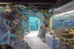 Crane Point Museum, centro de la naturaleza y sitio histórico Foto de archivo libre de regalías