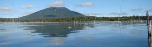 Crane Prairie Lake Royalty Free Stock Images