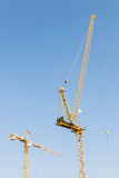 crane red tower Arkivbild