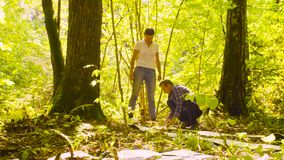 Two ecologist in the forest stock video footage