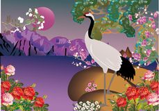 Crane in spring landscape Stock Image
