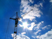 Crane and Sun. Crane in beams of the sun Royalty Free Stock Photo