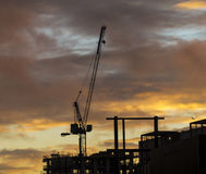 Crane at sundown Royalty Free Stock Photos