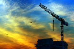 Crane and sunrise Royalty Free Stock Photos