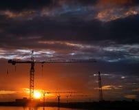 Crane at sunset Stock Photography