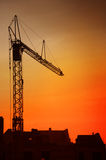 Crane on the sunset Royalty Free Stock Image