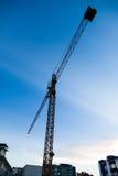 Crane on sunset Royalty Free Stock Images