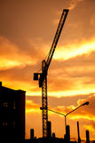 Crane on sunset Stock Images