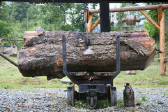 Crane to move felled tree Stock Image