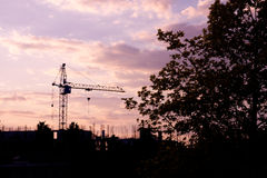 Crane and trees silhouette at sunset Royalty Free Stock Photos