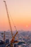 Crane in twilight Stock Images