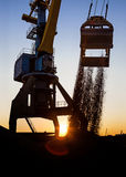 Crane unloading. A crane unloading its load Royalty Free Stock Images
